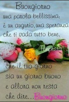 Italian Quotes, Messages, Day For Night, Emoticon, Good Morning, Verses, Sunday, Mary, Facebook