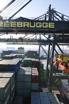 Container Handling Zeebrugge