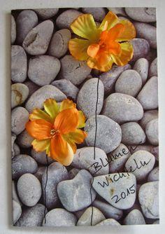 Diamantin´s Hobbywelt: Blumenwichteln 2015  Mein Samen ist auch da.