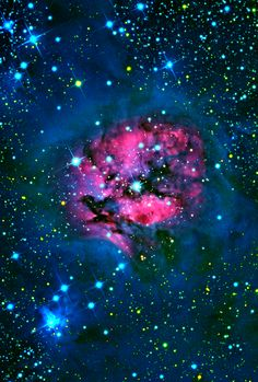 Cocoon Nebula, IC is a reflection/emission nebula & Caldwell object in the constellation Cygnus. It is 3300 ly distant Hubble Space Telescope, Space And Astronomy, All Nature, Science And Nature, Galaxy Space, Carl Sagan, Look At The Stars, Deep Space, Space Space