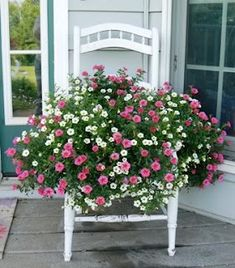 Pretty white chair turned into container for pink and white blooming plants....love this, just beautiful!!
