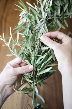 DIY Simple Olive Garland Centerpiece - Hither & Thither - maybe Teal will help?! can be done a few days in advance.