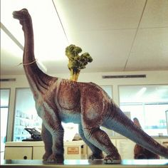 Fun Office Finds  How cool is this upcycled dinosaur toy-planter? Thanks for being able to part with this Allyson Dickman, Assistant Lifestyle Editor!  —@Elliot Stokes, Designer