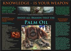 Palm Oil is the Devil, truly. It is wiping out huge swaths of rainforest, and enslaving the Orangutan.