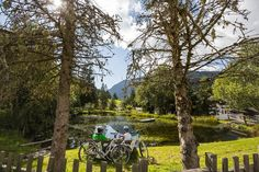 lake trip spring hiking riding outside camping Hiking Supplies, Electric Bicycle, The Outsiders, Scenery, Camping, Seasons, Spring, Green, Plants