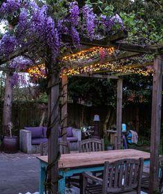 Backyard Greenhouse, Balcony Garden, Backyard Patio, Lawn And Garden, Home And Garden, Garden Makeover, Patio Makeover, Wisteria Pergola, Pergola Designs