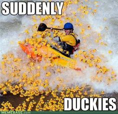 Suddenly Duckies