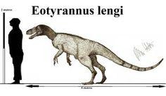 Eotyrannus lengi by Teratophoneus on DeviantArt Prehistoric Wildlife, Prehistoric Creatures, Jurassic Park, Dinosaur Drawing, Prehistory, Star Vs The Forces, Science And Nature, Natural History, Fossils