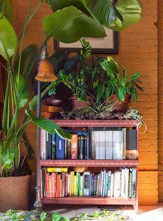 A Plant Lover's 'Secret Garden' in the Middle of Brooklyn, Design*Sponge