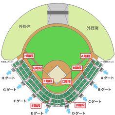 一般財団法人帯広市文化スポーツ振興財団 » 帯広の森野球場 座席表