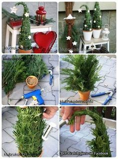super cute mini Christmas tree topiary