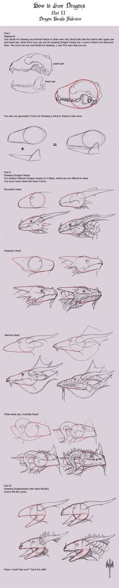 How to Draw Dragons II by ~Tarjcia on deviantART