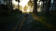Going through forest in this game... You don't even know how 'epic' it feels
