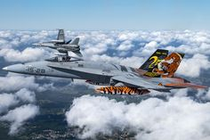 Spanish Hornets. Visit the post for more.