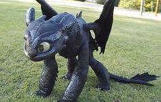 Dragoncico