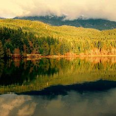 """Morning reflections.  #nitalakelodge #nitalake #mynita #lifeatthelodge #Curelounge #FixCafe #Aura #BC #Canada #exploreBC #whistler #whistlerunfiltered…"""