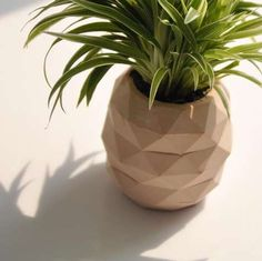 DIY Pineapple Plant Holders - These DIY Plant Holders are Geometrically Shaped Like Tropical Fruits
