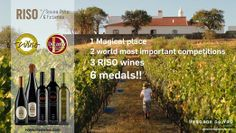 Photo: We are not working for medals... but it is quit nice to have this kind of news ;) #winelovers; #Alentejo; #Portugal