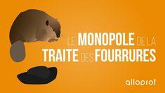 Alloprof - Le monopole de la traite des fourrures (histoire) Monopole, Winnie The Pooh, Disney Characters, Fictional Characters, Movie Posters, Fur Trade, Winnie The Pooh Ears, Film Poster, Fantasy Characters