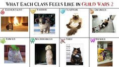 """I made this for a thread on the Guild Wars 2 forum called """"What each class feels like in GW2"""". Template provided by OP of that thread."""