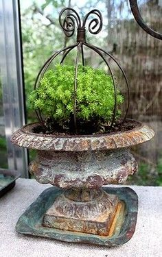 Old urn, wrought iron topiary,with green in a container garden. Garden Planter Boxes, Garden Urns, Topiary Garden, Urn Planters, Urn Vase, Container Plants, Container Gardening, Gardening Hacks, Organic Gardening