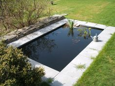 images of ponds - Google Search