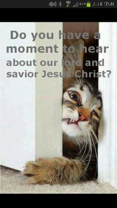 Jehovah witnesses I found this pretty hilarious but this is not how it works get your facts by goin to JW.org have a wonderful time.