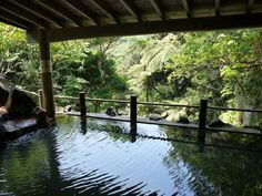 The most well known onsen is Miharashi-no-yu and it has a beautiful ocean view from the outside bath. But actually my favourite one is Uramigataki onsen. You will see a waterfall next to the bath and you can enjoy forest bathing while soaking in onsen. It is Men and Women mixed bath so you need to wear a swimsuit. Unlike other onsen, you will not be able to use soap or shampoo, just bathing only. #tokyoislands #japan travel #japantravelblog #placestovisitinjapan