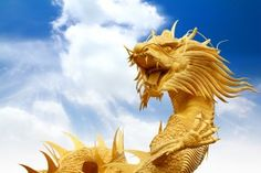 Aziz Shamanism - Dragon Empowerments : Dragon Reiki Package : This is a good introduction for beginners to dragon powers. You will get Dragon Reiki levels 1 and 2, Dragon Ki Reiki, Dragon Empowerment, and Power of Dragon empowerment. Cost: all for £40