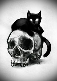 Drawing skull tattoo skeleton art 50 ideas for 2019 - drawing skull . - Drawing skull tattoo skeleton art 50 ideas for 2019 – drawing skull tattoo skeleton art 50 ideas - Cat Painting, Sketches, Skull Art, Drawings, Cats Art Drawing, Art, Skeleton Art, Dark Art Drawings, Cat Tattoo