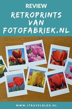 Van Fotofabriek.nl mocht ik een setje van 8 retroprints uitkiezen. Ik koos voor foto's die ik in april 2020 in de Bollenstreek heb gemaakt. Mijn review over de retroprints van Fotofabriek.nl lees je op mijn website. Lees je mee en doe inspiratie op. #review #fotofabriek #retroprints #bollenstreek #tulpen #jtravelblog #jtravel