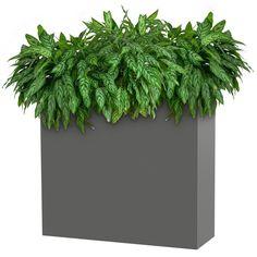 Metal Divider Planter - Modern Elite | PureModern Rectangular Planters, Patio Planters, Metal Planters, Planter Accessories, Fire Pit Accessories, Indoor Fire Pit, Outdoor Fire Table, Commercial Planters, Moving Walls