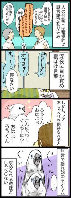 漫画「いたずらオウムの生活雑記」 (185) おしゃべりを求められると | ライフスタイル | マイナビニュース