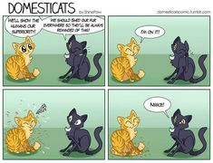 DomestiCats :: Shedding | Tapastic Comics - image 1
