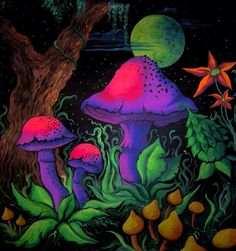 """""""Keep breathing. Keep breathing."""" Terence McKenna tells a story and reflects on the importance of discipline. Forest Drawing, Forest Painting, Painting Inspiration, Art Inspo, The Magic Faraway Tree, Trippy Mushrooms, Mushroom Pictures, Psychadelic Art, Psychedelic Drawings"""