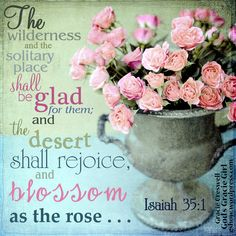 "Isaiah 35:1 - ""The wilderness and the solitary place shall be glad for them; and the desert shall rejoice, and blossom as the rose..."""