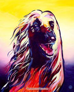 PPP - Afghan Hound https://www.etsy.com/listing/97142604/afghan-hound-8-x-10-fine-art-print?ref=shop_home_active