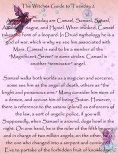 The Witches Guide to Tuesday 2