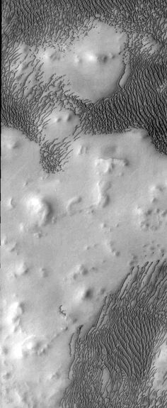 Edited Odyssey image of sand dunes surrounding hills in the polar region (which I don't remember) of Mars. Cosmos, Space Images, Space Photos, Mars Planet, Planets And Moons, Sistema Solar, Space And Astronomy, Our Solar System, To Infinity And Beyond