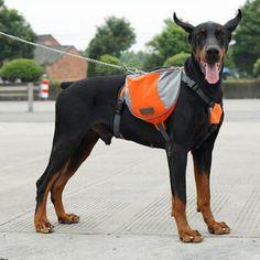 [TAILUP] Big Middle Dog Outdoor Backpack, Dog Saddle Food Bag Harness Carrier for Traveling Hiking Camping PDBAG005orange