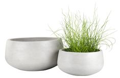 Choose from large planters, hanging planters and balcony plant pots. Garden Planters, Planter Pots, Cement Color, Garden Makeover, Large Pots, Cool Plants, Really Cool Stuff, Raised Beds, Shopping