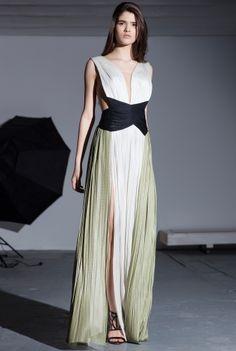 Maria Lucia Hohan   AKRIS gown
