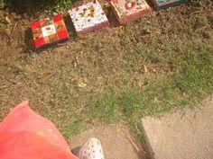 2010 garden border stones #2