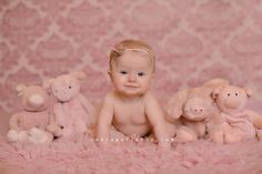 Six month photo, baby and pigs, zebra gallerie, photo shoot, baby picture