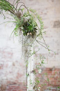 Customized White Wedding Arch with birch, air plant, white quinces,  and succulent @stylemepretty Photo by @melissaleekruse
