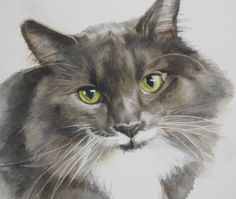 Longhaired cat watercolour painting: Fiona by Kimberly Meuse Watercolor Cat, Watercolor Animals, Watercolor Paintings, Watercolors, Cat Paintings, Cat Drawing, Drawing Animals, Here Kitty Kitty, Crazy Cats
