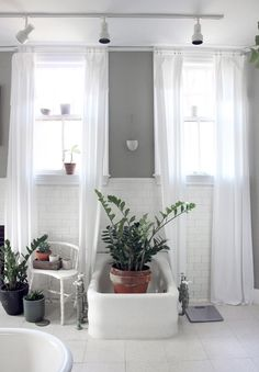 Before & After: Gray + Green Bathroom Redo Gray And White Bathroom, Grey Bathrooms, Beautiful Bathrooms, Bathroom Green, Bathroom Plants, Bathroom Kids, Bathroom Design Small, Botanical Bathroom, Diy Curtains