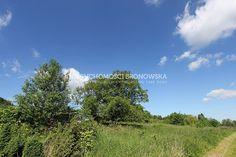 Dzialka na sprzedaż - Bielsko-Biała - Kamienica - BRN-GS-354 - 2598.00m² - Bronowska