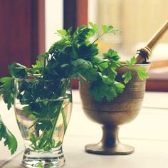 If you keep greens like parsley, dill or mint in a vase or jar filled with water (just like flowers), they will stay fresh longer.
