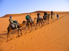 See The Best Of #Morocco From #Casablanca To #Marrakech. Admire The City Of Fes, See The Sands Of The #SaharaDesert  with Camel Safaries. So visit @ http://camelsafaries.net/